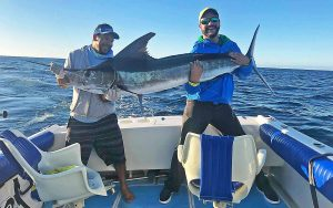 jc-sportfishing-cabo-los-cabos-fish-report-2019