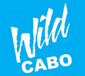 wild-cabo-tours-logo
