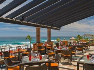 tomatoes-restaurant-cabo-01