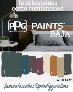 ppg-paints-baja-02