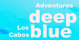 adventures-cabo-deep-blue