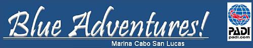 blue-adventures-logo