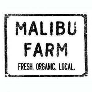 malibu-farm-los-cabos-01
