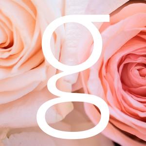anna-gomes-photo-logo
