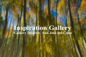 inspiration-gallery-san-jose-cabo-02