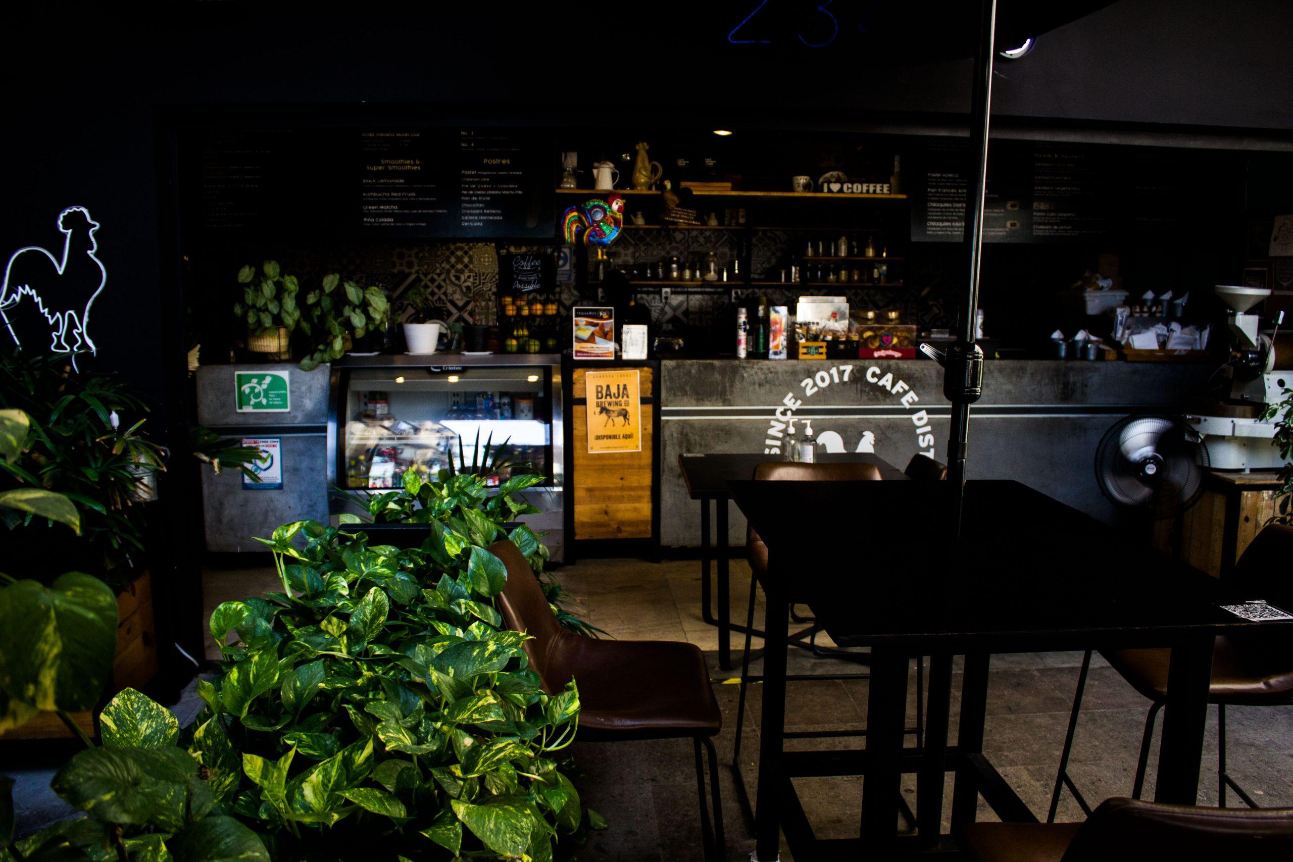 cafe-distrito-1