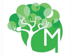 marcial-by-mako-veggie-vegan-cabo