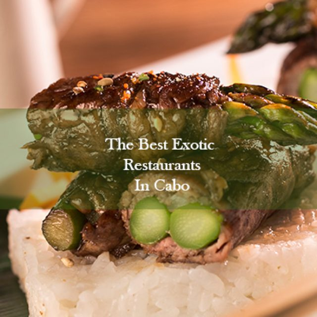 The Best Exotic Restaurants in Los Cabos