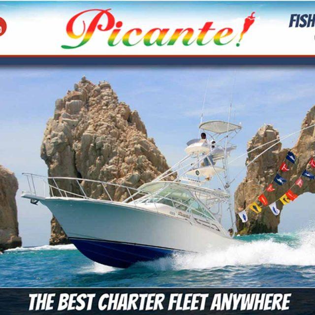 Picante Sportfishing Fish Report 06 to 11 Jan 2020