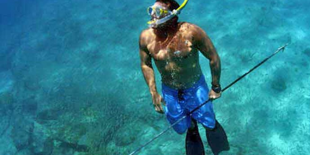 How to Spear Fish