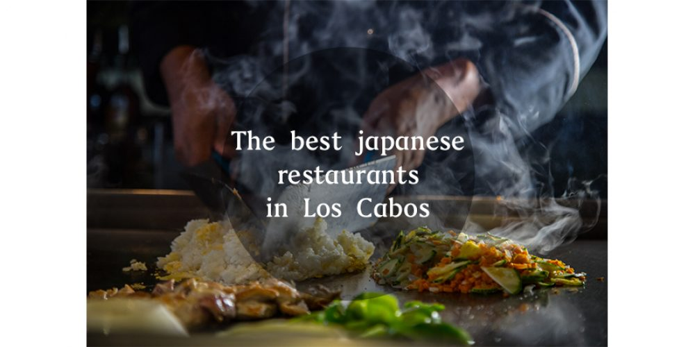 The Best Japanese Restaurants in Los Cabos