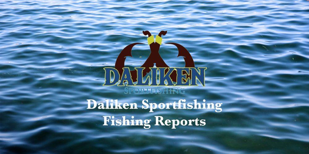 Daliken Sportfishing Fishing Report, March 2020