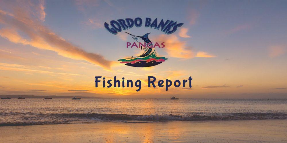Gordo Banks Pangas Fish Report October 5, 2018