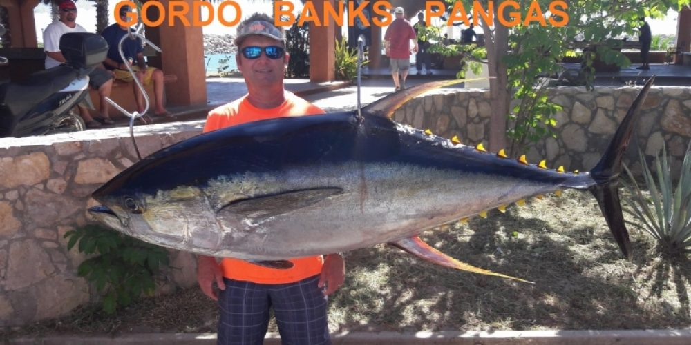 Gordo Banks Pangas Fish Report November 11th, 2017