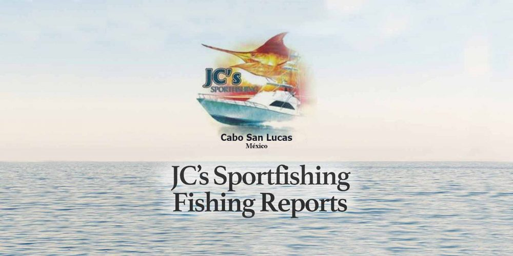 JC Sportfishing Weekly Fishing Report 30 Sep To 6 Oct