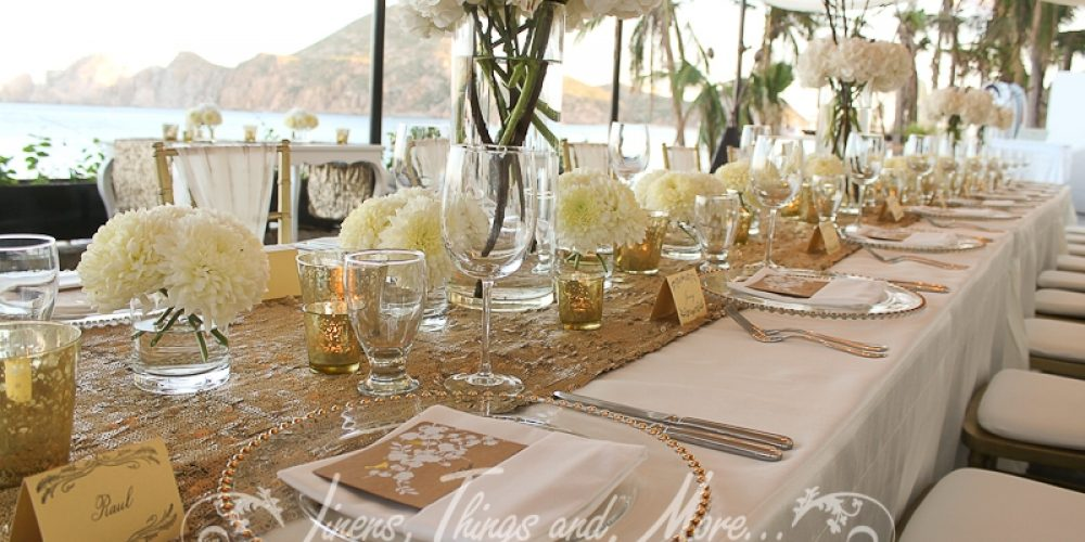 Wedding Destination Planners Met in Cabo