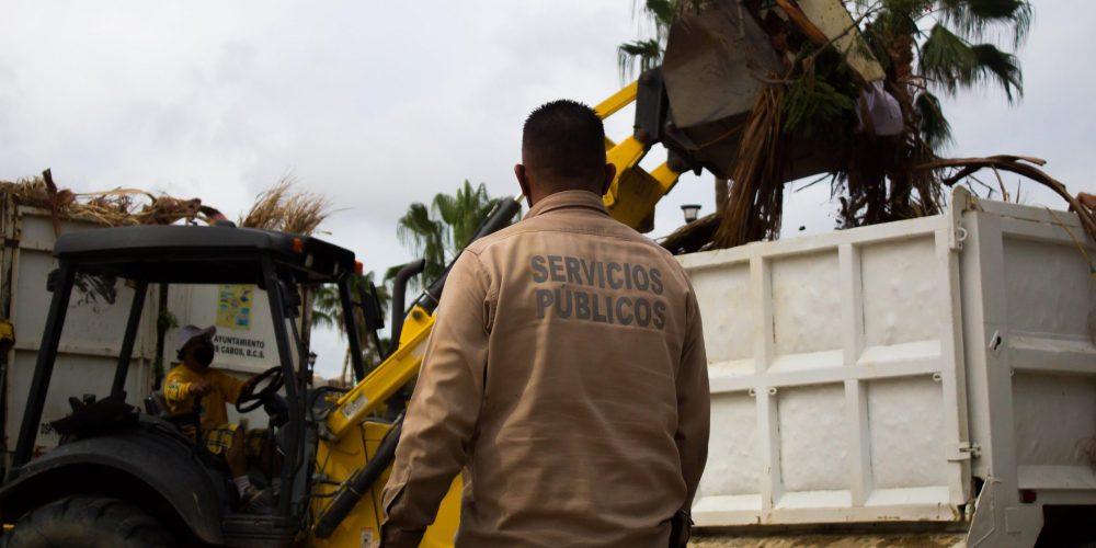 Hurricane Olaf: The Unsung Heroes Of Los Cabos