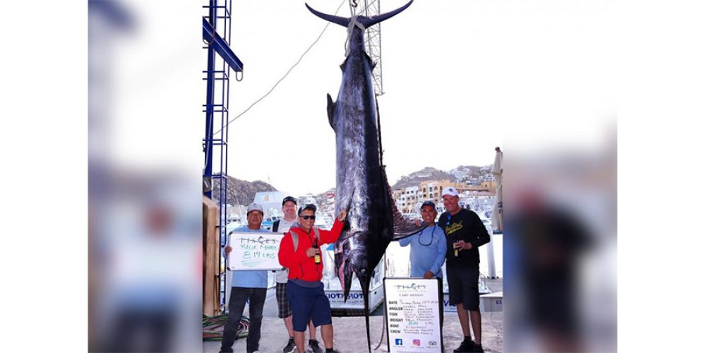 Unveiling of Marlin Monument in Cabo April 2011