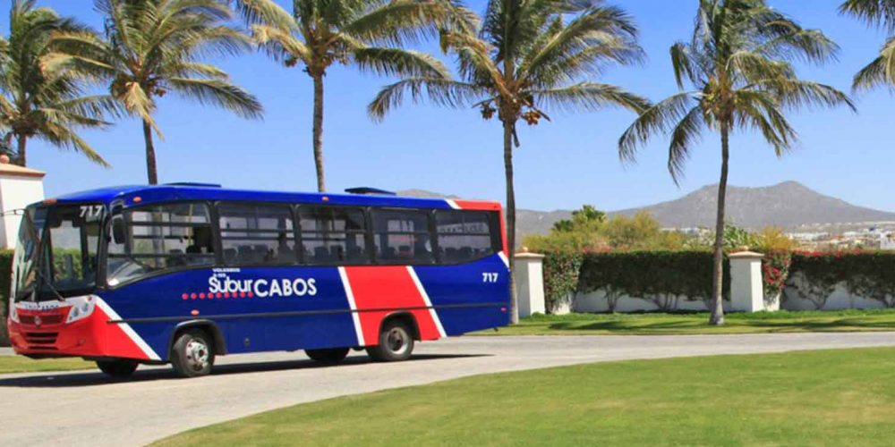 Carless in Los Cabos: Public Transportation