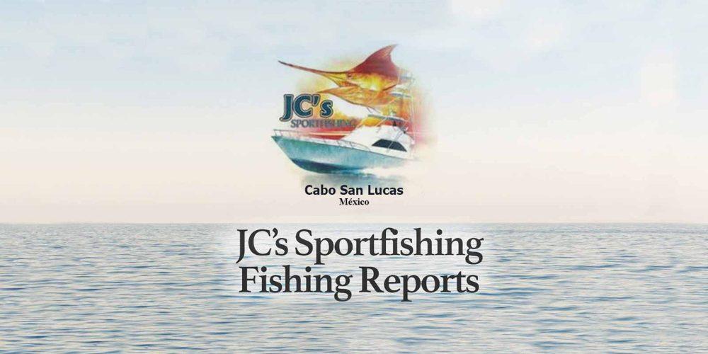 JC Sportfishing Fish Report 11 August 2019